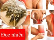 Tin tức sức khỏe - Cách cải thiện đau nhức xương khớp an toàn không gây viêm loét dạ dày từ thảo dược quý Bắc Mỹ