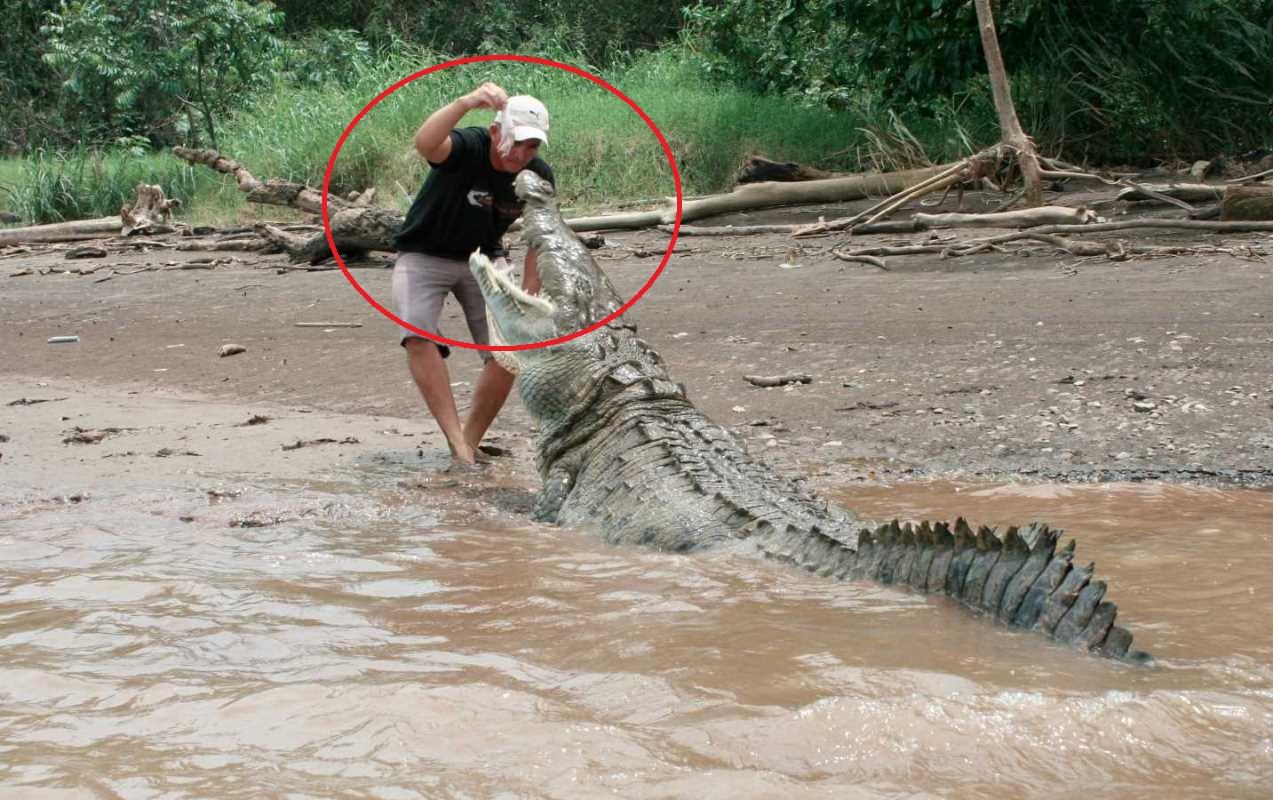 Malaysia: Rùng mình phát hiện nhiều mảnh thi thể người sau khi cá sấu sổng chuồng - 1