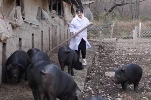 Gái xinh bỏ phố về quê nuôi lợn đen kiếm bộn tiền - 1