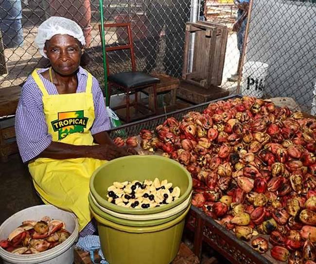 Khoảng thế kỷ 18, loại quả này được đưa sang Jamaica từ Tây Phi. Ngày nay, loại quả này được dùng trong ẩm thực.