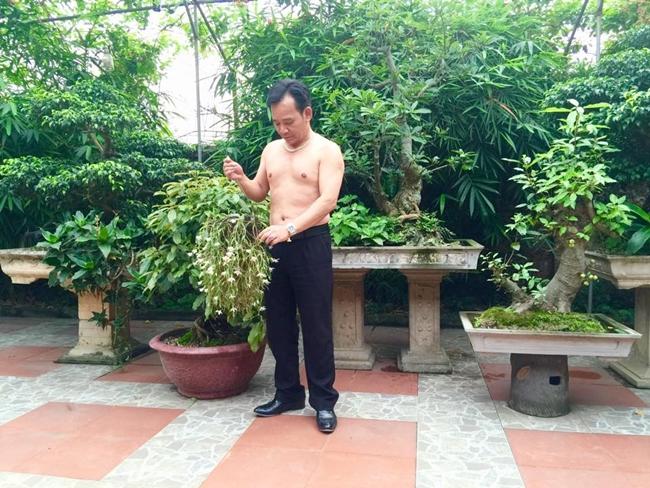 Nghệ sĩ Quang Tèo khoe body khi về thăm ngôi nhà vườn rộng 1000m2 ở ở ngoại thành thuộc Đồng Trúc, Thạch Thất, Hà Nội. Quang Tèo cho biết những loại cây này không phải quý hiếm gì nhưng là công sức anh sưu tầm được từ những lần đi diễn nên bản thân rất trân trọng.