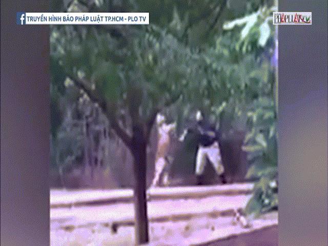 Kangaroo hung dữ tấn công nhân viên vườn thú