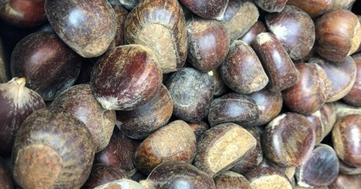 Hạt dẻ TQ 50-60.000 đồng/kg gắn mác hạt dẻ Trùng Khánh, Sapa thổi giá cao gấp 3 - 1