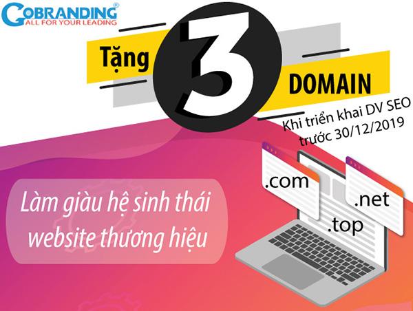 GOBRANDING tặng top 3 tên miền cho khách triển khai dịch vụ SEO tháng 12 - 1
