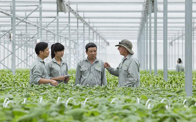 Đầu tư vào nông nghiệp tăng mạnh - 1