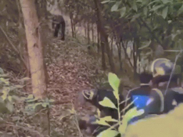 Clip cảnh sát vây bắt nghi phạm chém 5 người tử vong ở Thái Nguyên