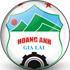 Trực tiếp bóng đá HAGL - TP.HCM: Đội khách rút ngắn cách biệt (Hết giờ) - 1