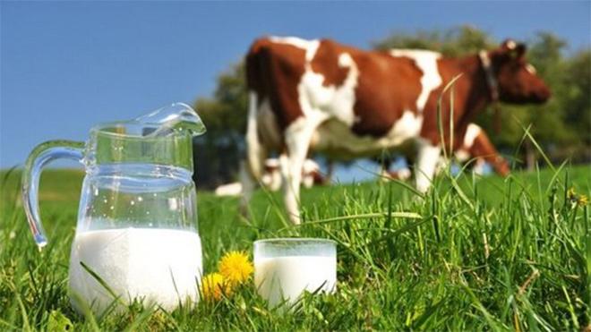 Sữa non Onefa Mama: món quà tuyệt vời dành cho bé - 1