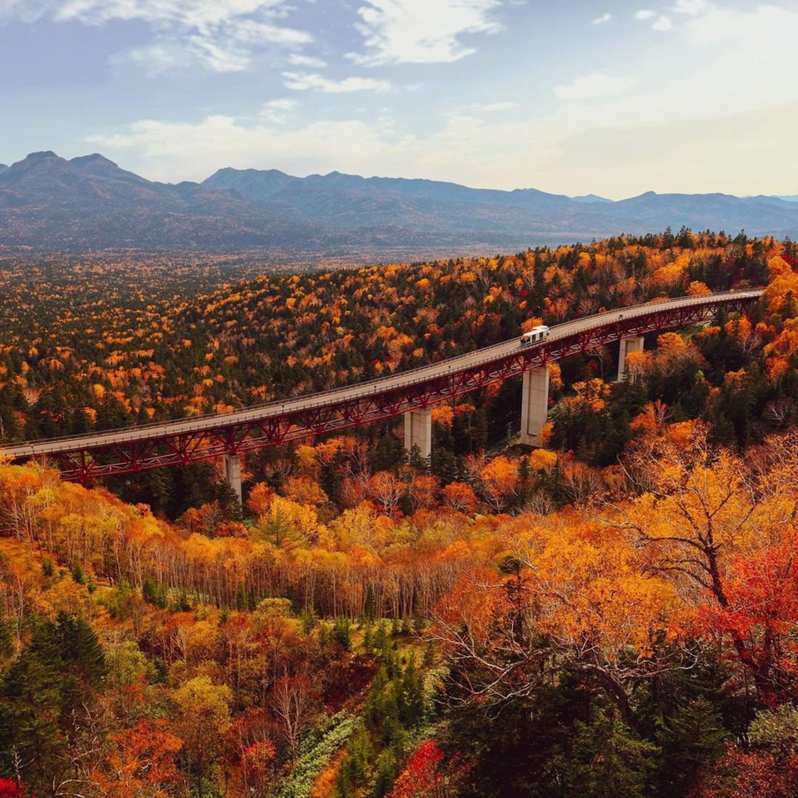 Ít người biết nơi này đón mùa thu sớm nhất Nhật Bản - 1