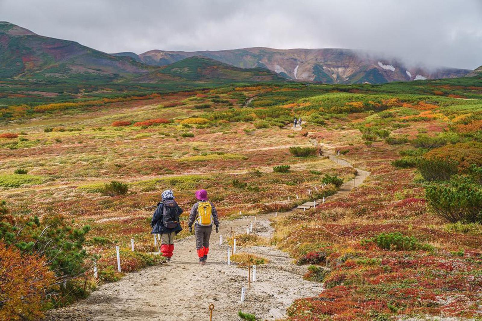 Ít người biết nơi này đón mùa thu sớm nhất Nhật Bản - 7