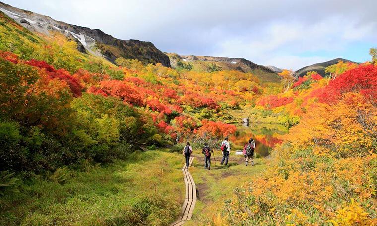 Ít người biết nơi này đón mùa thu sớm nhất Nhật Bản - 9