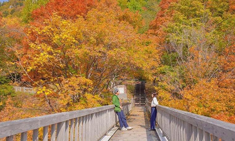 Ít người biết nơi này đón mùa thu sớm nhất Nhật Bản - 10