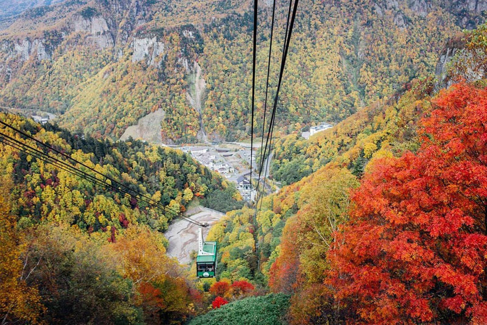 Ít người biết nơi này đón mùa thu sớm nhất Nhật Bản - 11