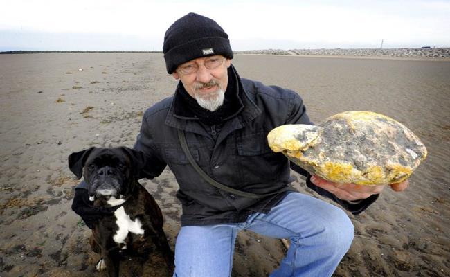 Vào tháng 4/2016, một cặp đôi người Anh đã tìm thấy khối long diên hương 1,57 kg trị giá hơn 70.000 USD (1,62 tỷ đồng) trên bãi biển Middleton Sands, gần vịnh Morecambe.