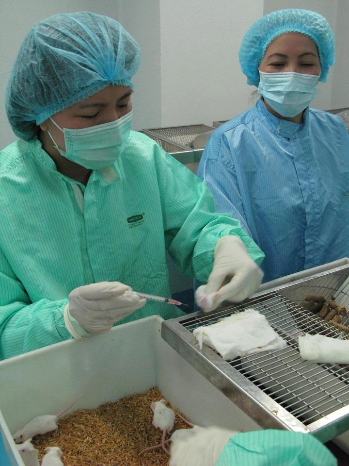 Tiến độ sản xuất vắc xin COVID-19 tại Việt Nam hiện ra sao? - 1
