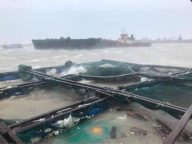 Quảng Ngãi: Cảnh tan hoang ở huyện đảo Lý Sơn sau khi bão số 9 càn quét - 15