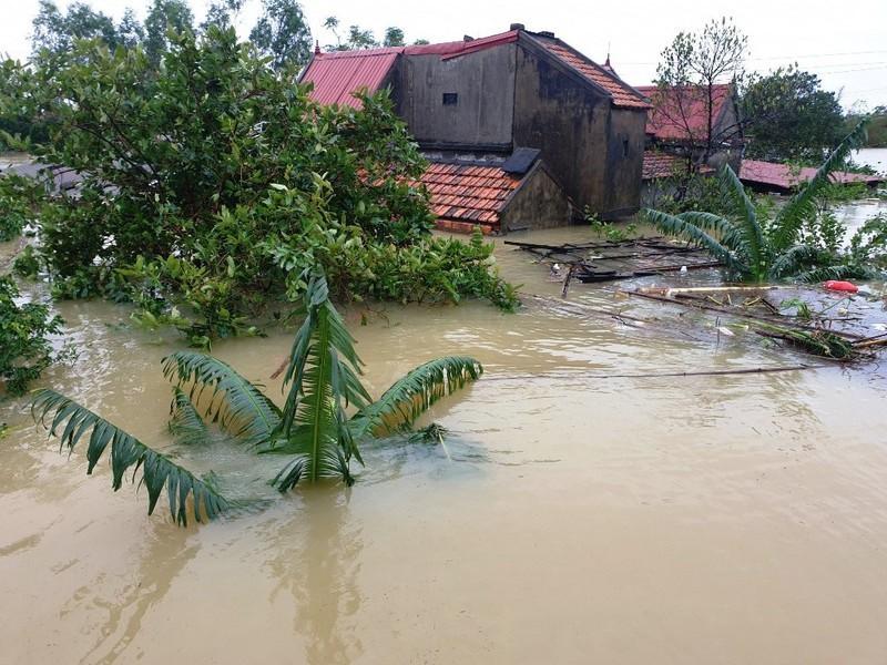 Bộ GD&ĐT có kịch bản nào cho học sinh vùng lũ lụt ở miền Trung? - 1