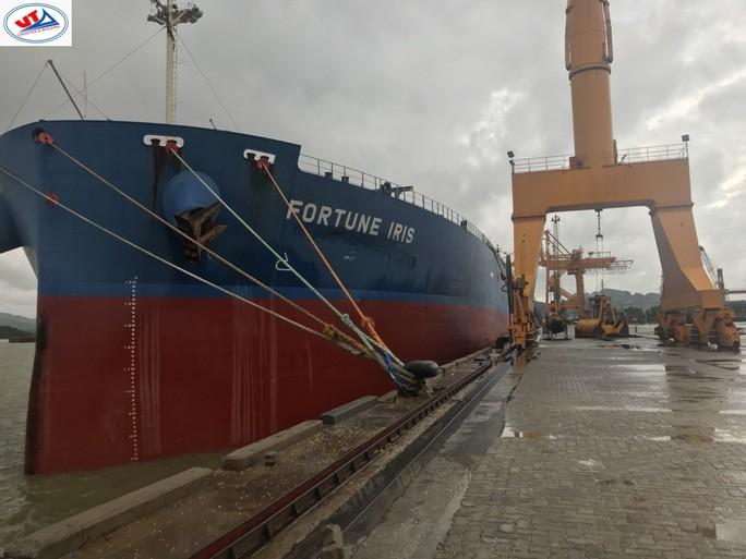 Thông tin mới nhất vụ 2 tàu cá Bình Định chìm: Cứu được 3 người, 7 người đã chết - 1
