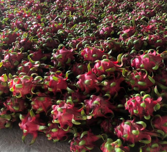 Đây là loại trái cây giúp cải thiện sức khỏe tim mạch - 1