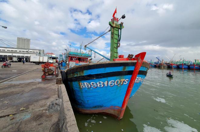 Bình Định: Ngư dân đánh bắt xa bờ méo mặt vì đá tan, cá hỏng - 1