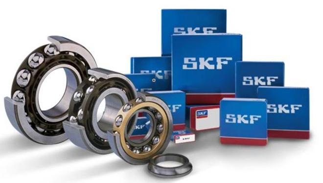 SKF Ngọc Anh - Nhà phân phối uỷ quyền vòng bi SKF chính hãng tại Việt Nam - 1