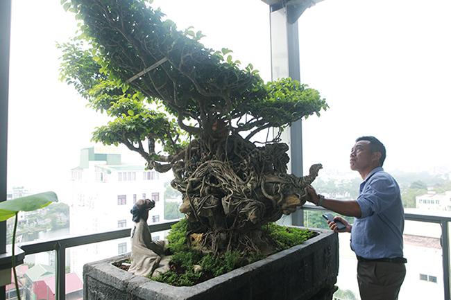 Chủ nhân của tác phẩm là ông Nguyễn Gia Thọ (Hà Nội) cho biết, đây là một trong những tác phẩm độc nhất vô nhị thuộc dòng sanh Nam Điền, mang tạo hình con vật ở miền Bắc.