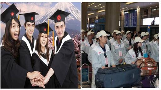 Đừng nhẫm lẫn giữa 2 chương trình du học và xuất khẩu lao động Nhật Bản - 1