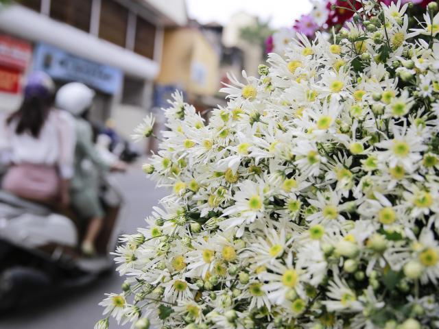 Du lịch - Hà Nội đẹp và lãng mạn trong ngày cuối thu