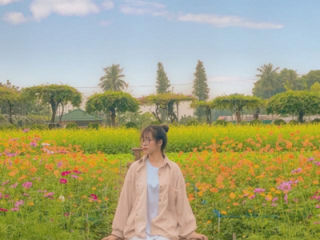 """Du lịch - Học viện Nông nghiệp Việt Nam sở hữu không gian tràn ngập sắc hoa, tha hồ """"sống ảo"""""""