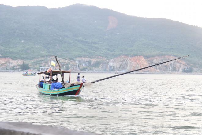 Ngư dân Hà Tĩnh trúng đậm ruốc biển, thu tiền triệu mỗi ngày - 1