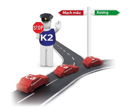 Vitamin K2 có thực sự làm trẻ tăng chiều cao vượt trội? - 1