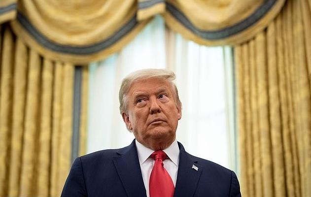 Luật sư của ông Trump trình bằng chứng 85.000 phiếu bầu giả ở bang chiến địa - 1