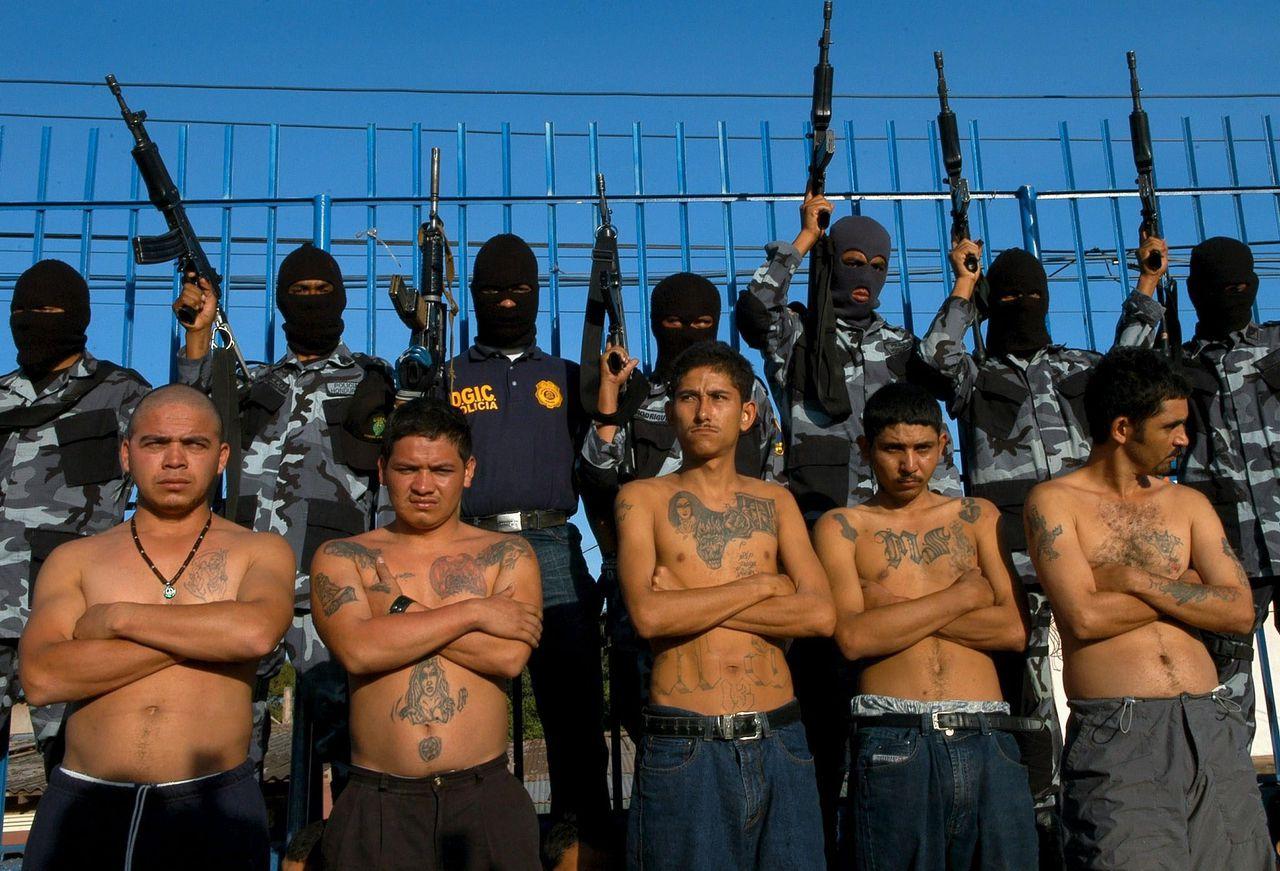 Mẹ một mình cầm súng truy lùng băng đảng giết người khắp Mexico, báo thù cho con gái - 1