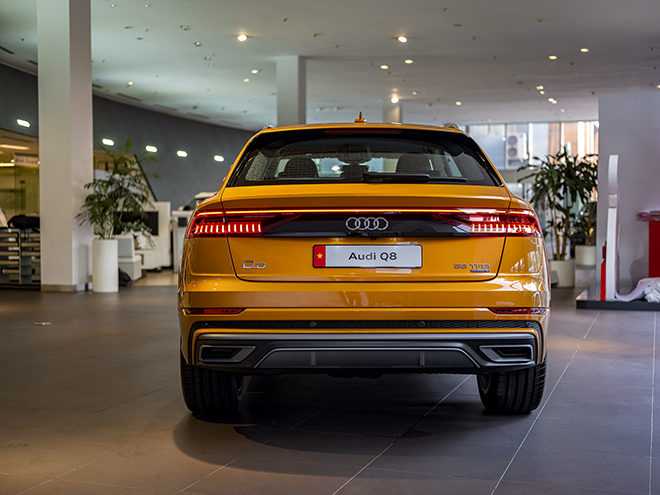 Lô xe Audi Q8 đầu tiên thông quan và đến tay khách hàng trong nước - 10