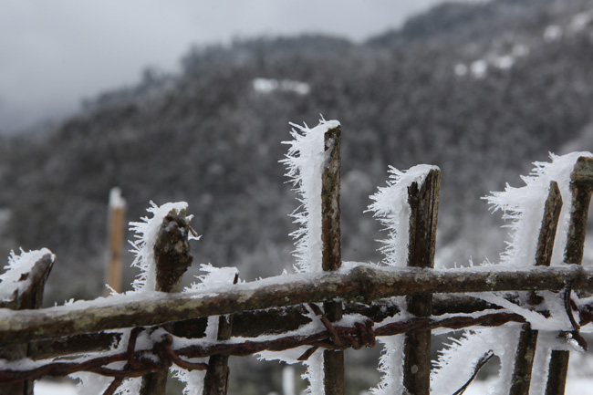 Miền Bắc sắp vào chính đông, có những đợt rét khốc liệt kéo dài 7-10 ngày - 1