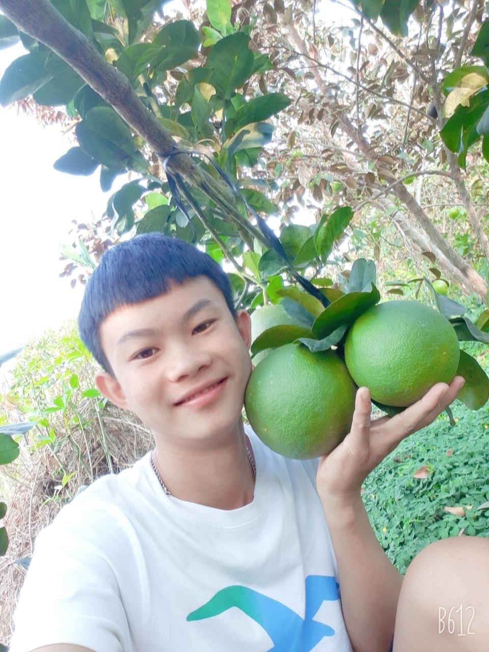 14 tuổi bỏ học về làm nông, chàng trai trẻ thu lãi hàng trăm triệu/năm - 1