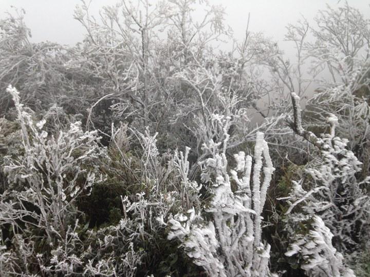 Không khí lạnh tràn về, miền Bắc khả năng xuất hiện băng giá trong dịp Tết Dương lịch - 1